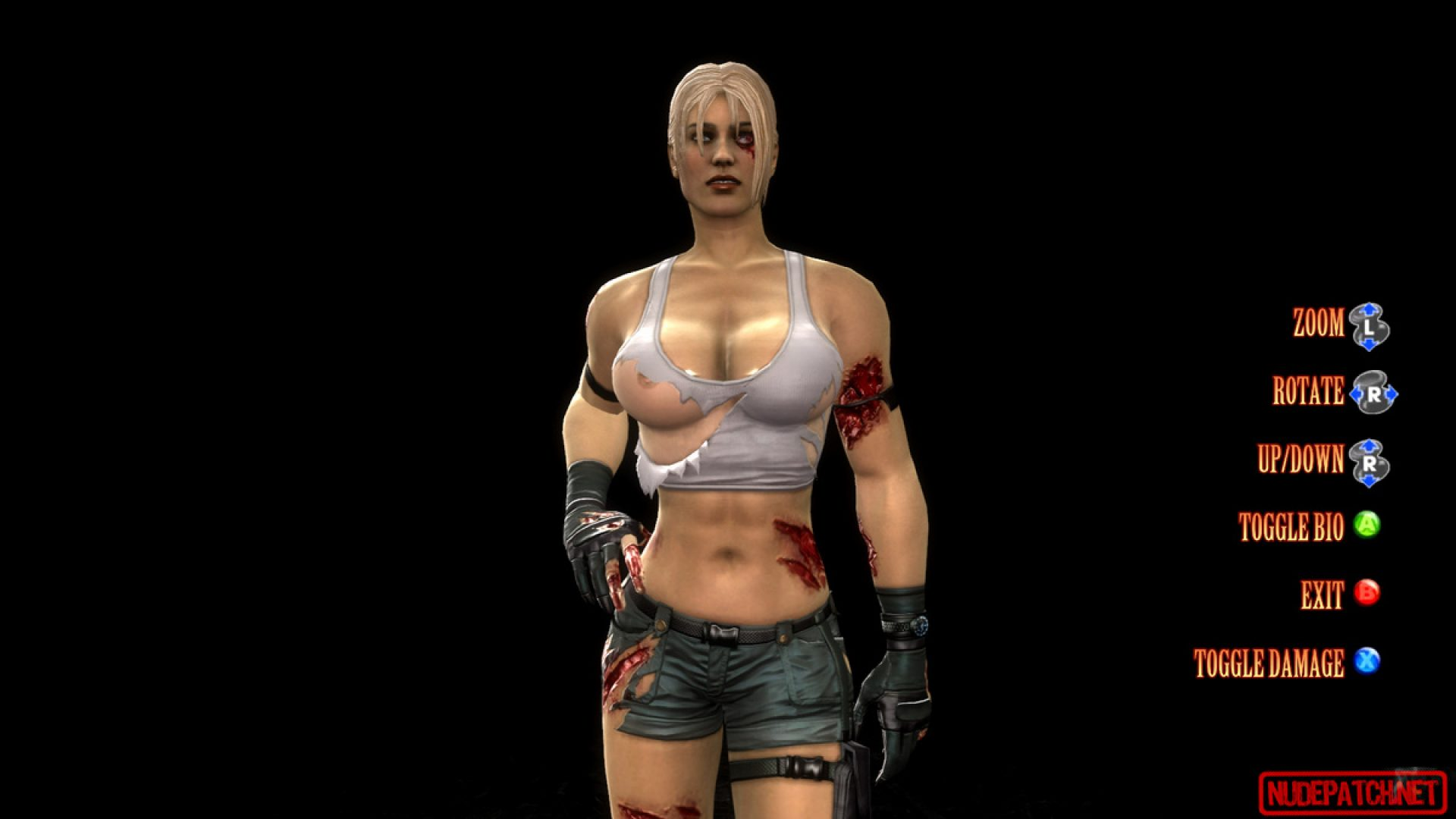 Mortal Kombat 9 Female Costume Destruction Mod