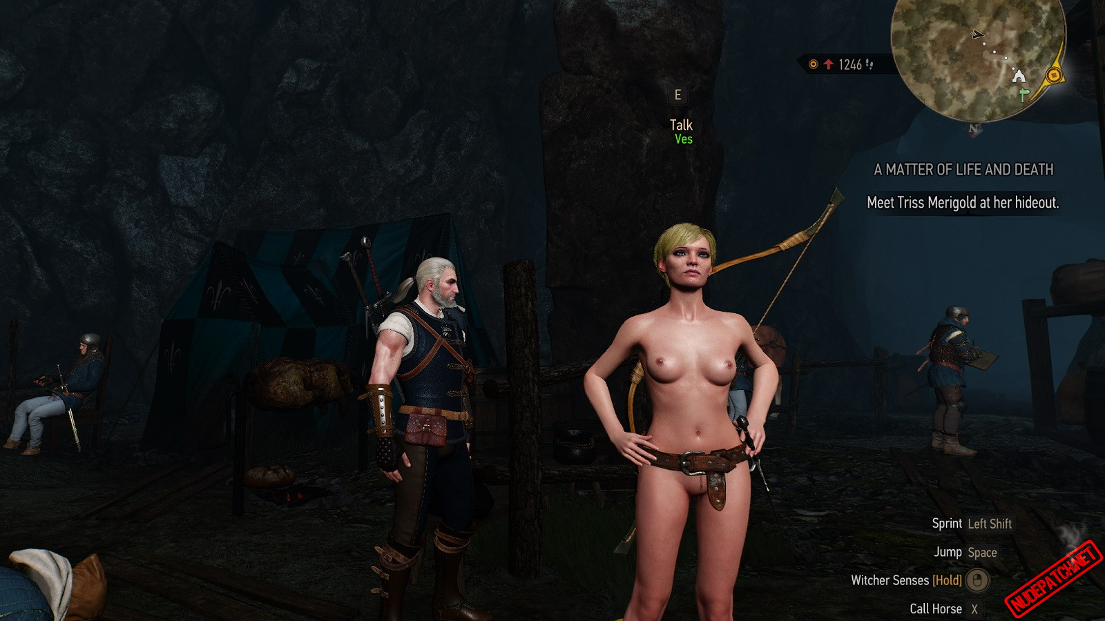 The Witcher 3 Nude Ves