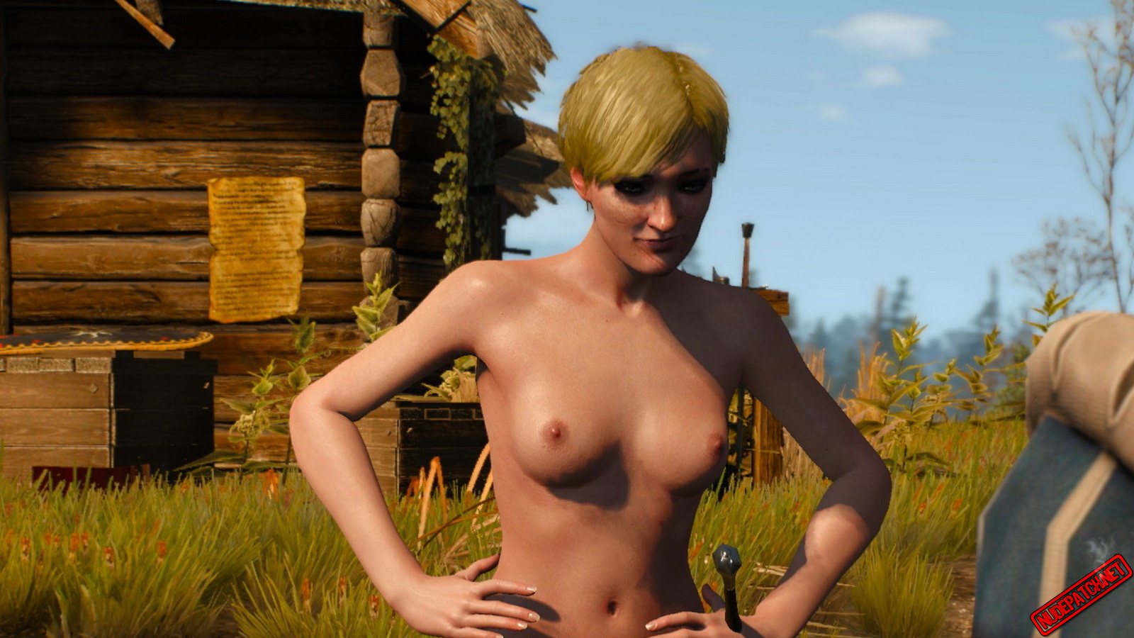 The Witcher 3 Nude Mod