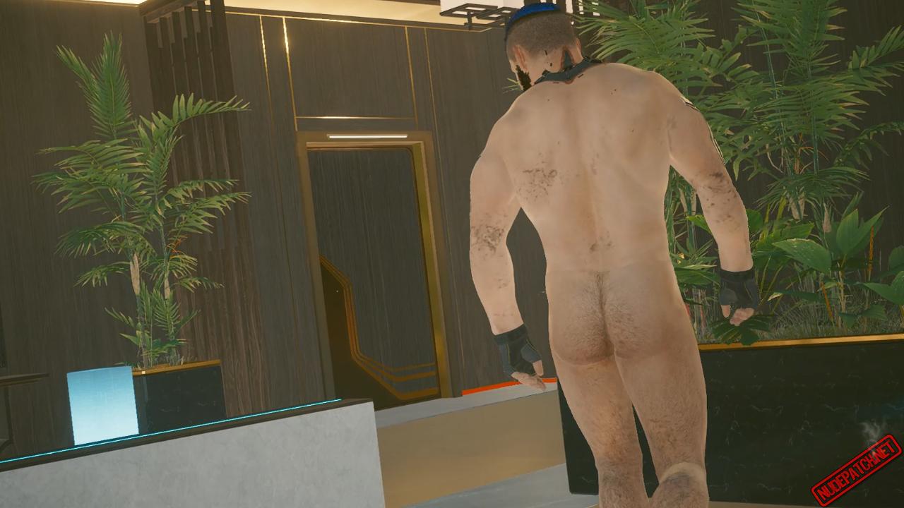 Cyberpunk 2077 Nude Males