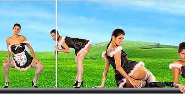 Lucky  Skirts, Maid, Virtual Girl..