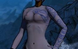 Borderlands 2 nude patch