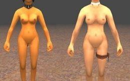 Final Fantasy XI nude mod pack
