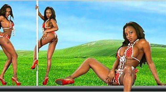 Felina Ebony Bikini,  Virtual Girl..
