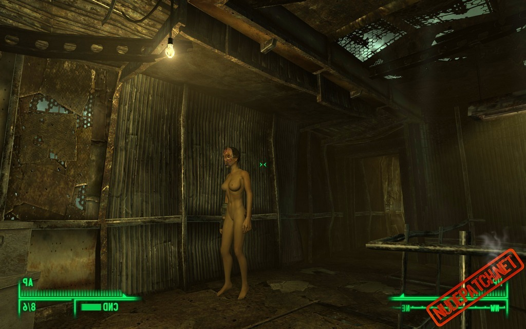 Fallout nude patch