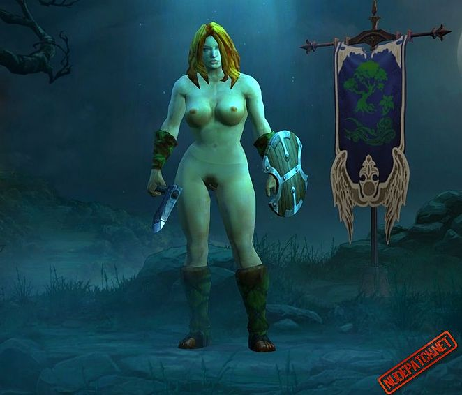 diablo video game women nude