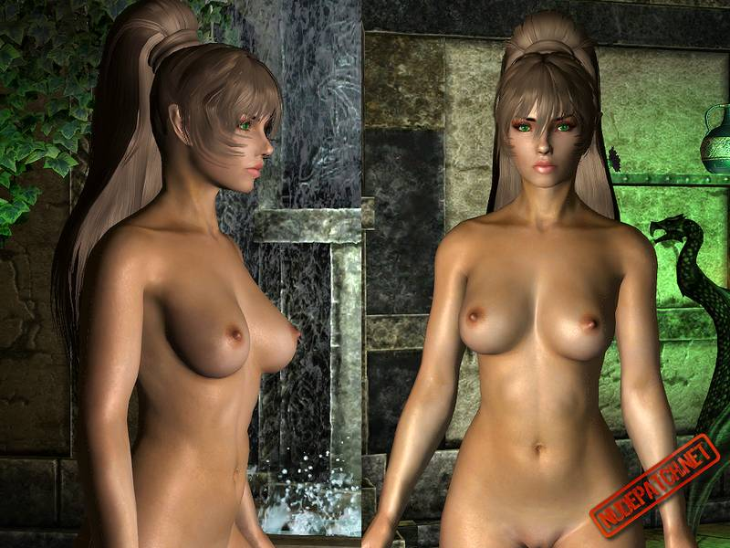 Agree, Skyrim nude patch share your