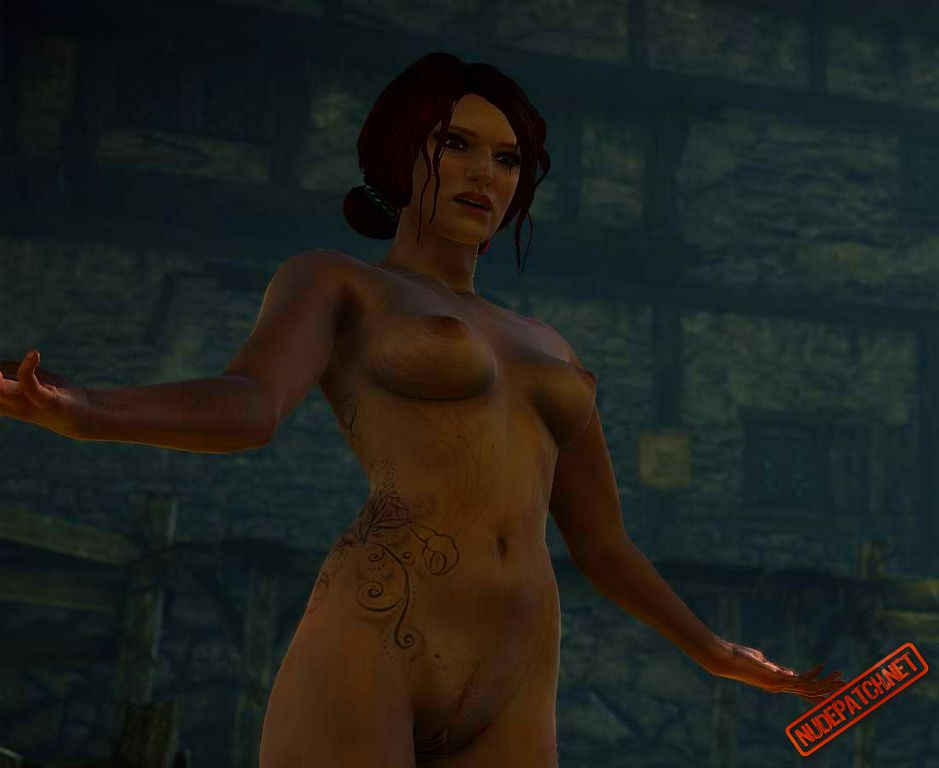 Remarkable idea The witcher nude skins seems