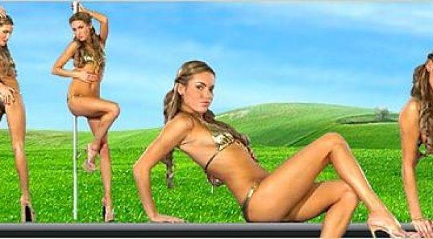 Viki Bikini,  Virtual Girl