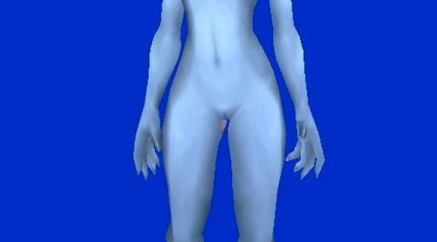 Blood Elf and Draenei Nude Skins