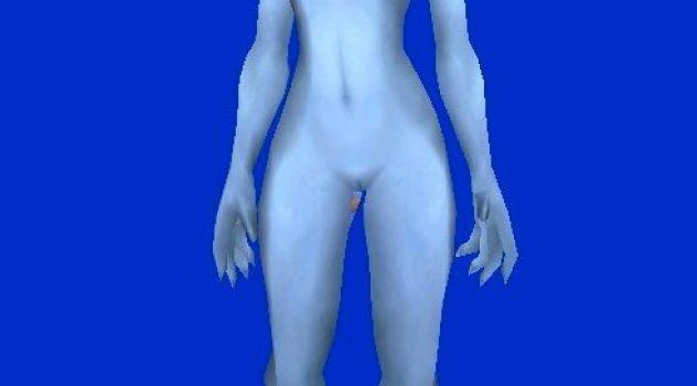 Blood Elf and Draenei Nude Skins
